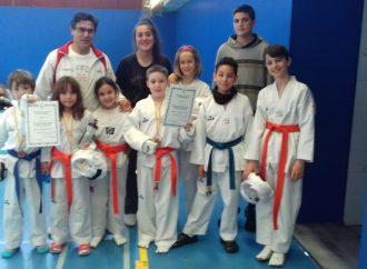 Taekwondo II