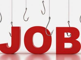 13 llocs de treball